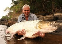 Thumb 57225608 river monsters jeremy wade congo