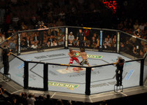 Thumb ufc 74 respect bout